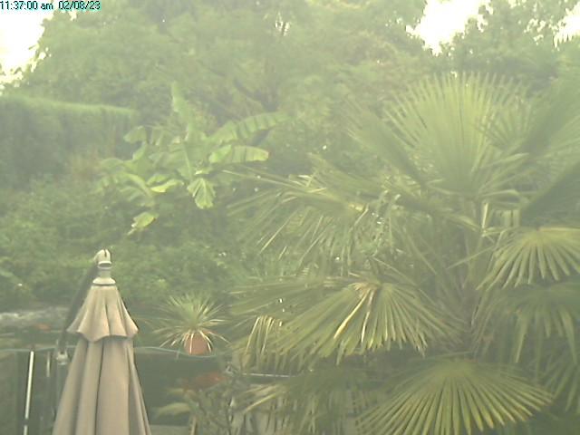 webcam jardin fraiture Tinlot Belgique 4557